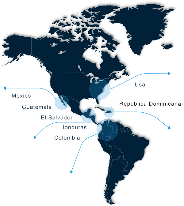 mapa zehirut global