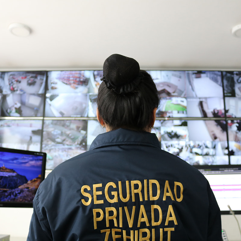 vigilancia zehirut pantallas